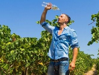 Summer Heat and Injury Claims – What You Can Do!